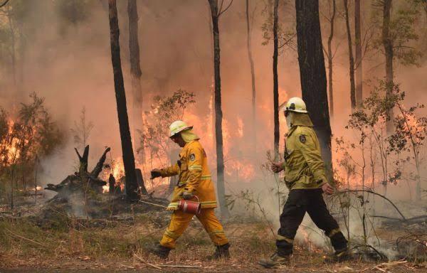 Kaylen Ward, 18+ Model sells nudes for  for Australia bushfires, raises 0k in 2 days