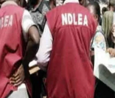 NDLEA Arrests 57 Suspected Drug Peddlers In Nigeria