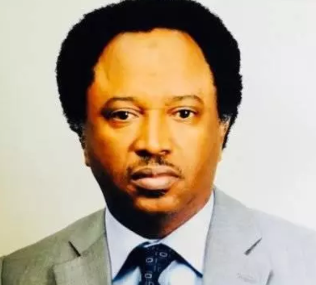 Senator Shehu Sani reacts to FG's decision on ASUU strike