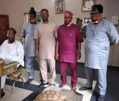 Makinde Presents New Tortoise to Soun's Palace in Ogbomoso