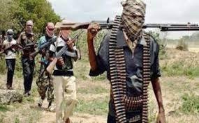 Bandits kill one, kidnap ten as they attack Kaduna polytechnic