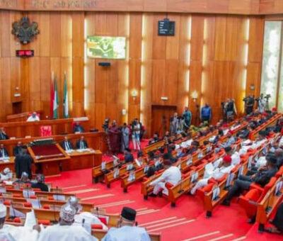 Senate confirms Sani Adam as INEC national commissioner